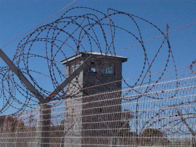Derecho penal. Esquizofrenia como eximente de responsabilidad penal.